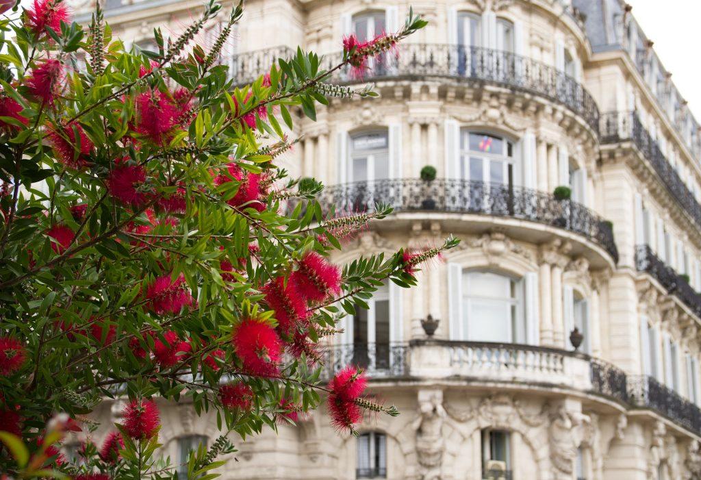 Où investir à Montpellier?