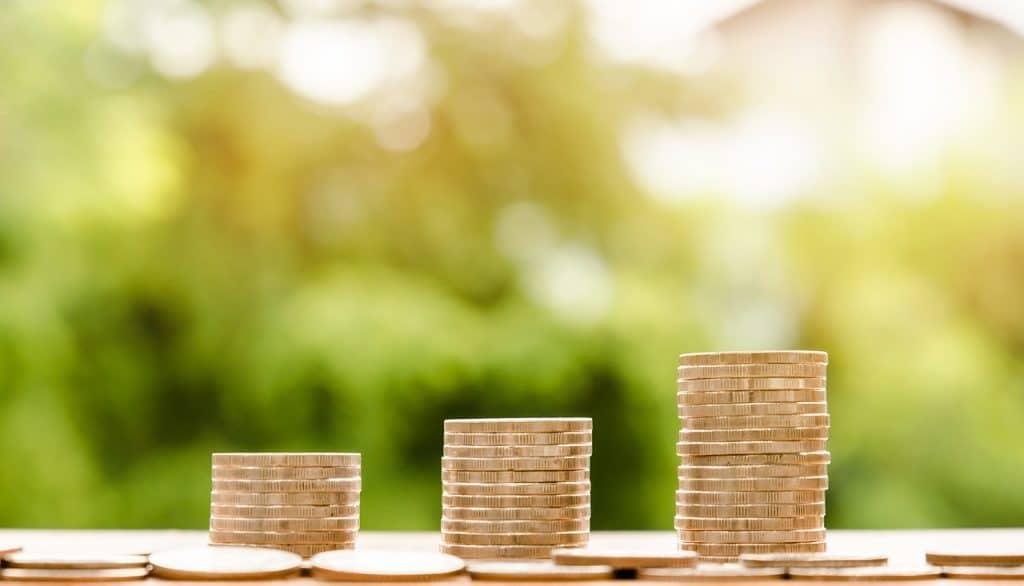 Qu'est-ce que le revenu par habitant?